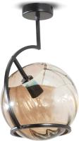 Потолочный светильник N&B Light Адэль 40104 (черный) -