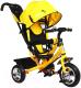 Детский велосипед с ручкой Micio Classic 2019 / 3871479 (желтый) -