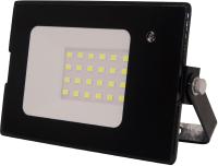 Прожектор ЭРА LPR-041-1-65K-030 / Б0043575 -