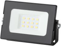 Прожектор ЭРА LPR-021-0-65K-010 / Б0043555 -