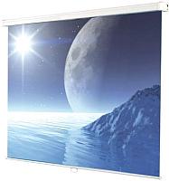 Проекционный экран Ligra Ecoroll Matt White 042843 (180x180) -