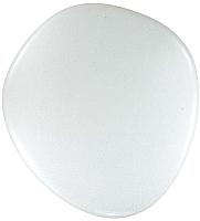 Потолочный светильник Sonex Stone 2039/EL (с пультом управления) -