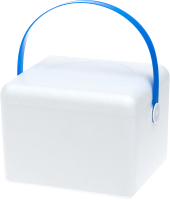 Термоконтейнер Iceman 313904 -