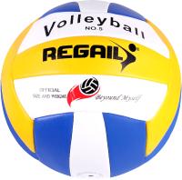 Мяч волейбольный Darvish RVB-001 / DV-S-28 -
