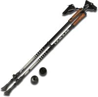 Палки для скандинавской ходьбы Indigo SL-602 М1 (черный) -