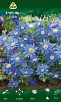 Семена цветов АПД Анемона бланда Блю Шейдз / A31044 (10шт) -