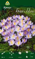 Семена цветов АПД Крокус Барр'с Пепл / A31050 (10шт) -