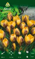 Семена цветов АПД Крокус Дороти / A30307 (10шт) -