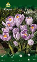 Семена цветов АПД Крокус Пиквик / A30313 (10шт) -
