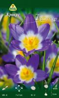 Семена цветов АПД Крокус Триколор / A30318 (10шт) -