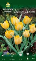Семена цветов АПД Тюльпан Брайт Джем баталини ботанический / A30716 (10шт) -