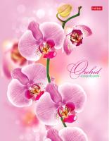 Тетрадь Hatber Розовая орхидея / 120ТК5B1-04374 -