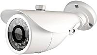 Аналоговая камера Ginzzu HAB-1031O -
