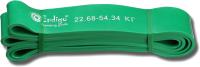 Эспандер Indigo Кроссфит 601 HKRBB (зеленый) -