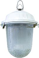 Светильник для подсобных помещений TDM НСП 02-100-001.01 У2 (без решетки, стекло, крюк) -