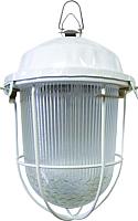 Светильник для подсобных помещений TDM НСП 02-100-002.01 У2 (с решеткой, стекло, крюк) -
