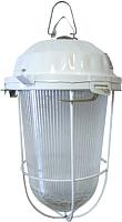 Светильник для подсобных помещений TDM НСП 02-200-022.01 У2 (с решеткой, стекло, крюк) -