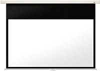 Проекционный экран Seemax Enjoyable CECR120HWM7 (276x194) -