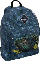 Школьный рюкзак Erich Krause EasyLine 17L Iguana / 48628 -