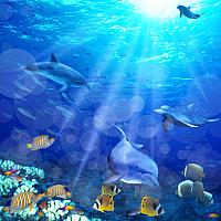 Шторка-занавеска для ванны Brimix Морское дно 02-09 -