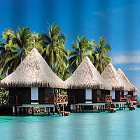 Шторка-занавеска для ванны Brimix Райский остров 02-14 -