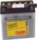 Мотоаккумулятор Fiamm FB14L-A2 / 7904450 (14 А/ч) -