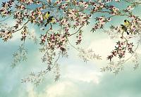 Фотообои Komar Sakura 8-213 (368x254) -