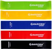 Набор эспандеров Darvish DV-S-109 -