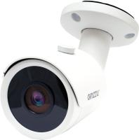 IP-камера Ginzzu HIB-5302A -