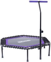 Батут BaseFit TR-401 (101см, фиолетовый/с держателем) -