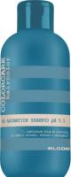 Шампунь для волос Elgon Color Care восстанавливающий (100мл) -