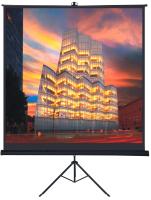 Проекционный экран Future Vision Tripod 160 T160SMW (160x160) -