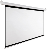 Проекционный экран Future Vision Video Electric 200 E200VMW (200x150) -