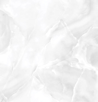 Плитка Netto Gres Onyx Silver Polished (600x600) -