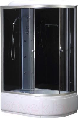 Душевая кабина Niagara NG-510-14 L 120x80x215 (тонированное стекло/хром)