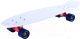 Пенни борд Ridex Abec-7 Blizzard (27x8) -