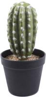 Искусственное растение Белбогемия Кактус LY24-1 / 85927 -