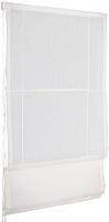 Римская штора Delfa Мини Natali СШД-01М-114/001 (57x160, белый) -