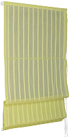 Римская штора Delfa Мини Fancy СШД-01М-144/165 (57x160, салатовый) -