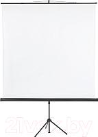 Проекционный экран Classic Solution Libra (T 180x180/1 MW-ST/B) -