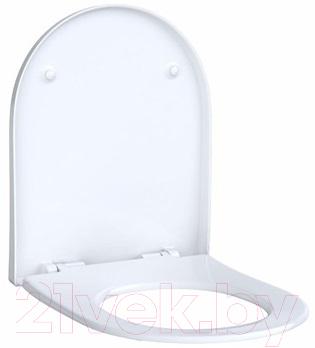 Сиденье для унитаза Keramag Acanto 500604012 (белый Alpine)