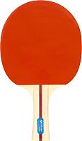 Ракетка для настольного тенниса Torneo Tour TI-B2000 -