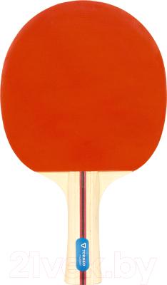 Ракетка для настольного тенниса Torneo Tour TI-B2000