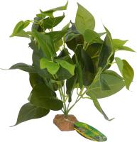 Декорация для террариума Lucky Reptile Golden Pothos / IF-33 -