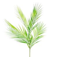 Искусственное растение Home and You 57655-ZIE-KWIAT -