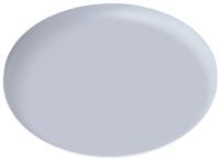 Точечный светильник Arte Lamp Prior A7981PL-1WH -