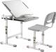 Парта+стул Растущая мебель Smart Elfin B201 (серый) -
