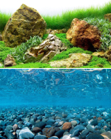 Декорация для аквариума Barbus Горная река. Зеленое море / Background 021 -
