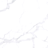 Плитка Netto London White Polished (600x600) -