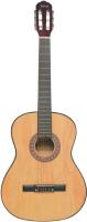 Акустическая гитара Terris TC-3901A NA -